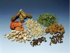 Tibetische Arzneimittel sind Vielstoffgemische; sie bestehen aus einer Vielzahl verschiedener Naturstoffe